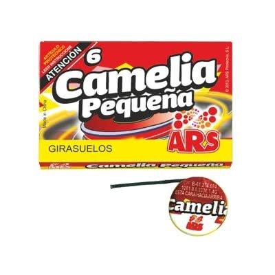 CAMELIA PEQUEÑA (6)