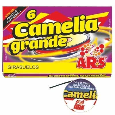 CAMELIA GRANDE (6)
